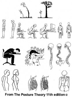 The Posture Theory compilation of diagrams of cause and effect